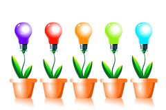 Growing energy light bulbs. Royalty Free Stock Photo