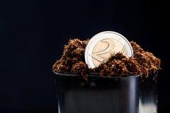 Growing euro coin Stock Photo