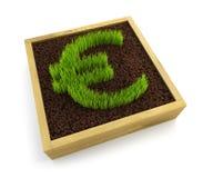 Growing euro symbol Royalty Free Stock Image