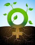 Growing female symbol like plant with leaves and r. Stylized plant in shape of woman sign in ground Royalty Free Stock Photos