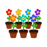 Growing flowers symbol. Flat Isometric Icon or Logo. 3D Style Pi Royalty Free Stock Photo
