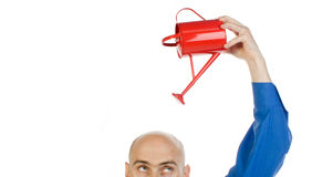 Growing hair. A metaphorical image of a bald man in a blue shirt, pouring a red water can on his head to grow his intelligence/hair, on a white background Stock Photo