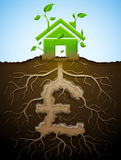 Growing house sign as plant with leaves and pound as root Stock Photography