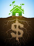 Growing house sign like plant with leaves and dollar like root Royalty Free Stock Photography