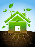 Growing house symbol like plant with leaves and roots Royalty Free Stock Images