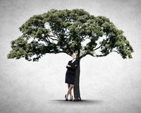 Growing income Stock Photo