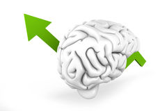 Growing Intelligence Royalty Free Stock Images