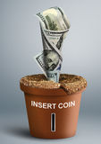 Growing Investment concept, money growth in pot Stock Photography