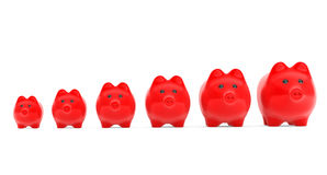 Growing investment concept. Red Piggy Banks in row. On a white background Royalty Free Stock Photography