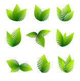 Growing Leafs Symbols Stock Photography