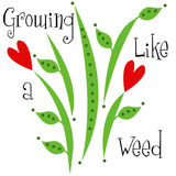 Growing like a Weed Children's Design Royalty Free Stock Image