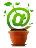 Growing mail symbol like plant with leaves in flow Stock Image