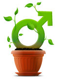 Growing male symbol like plant in flower pot Royalty Free Stock Photography