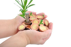 Growing money Stock Photography