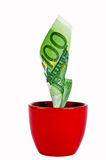 Growing money. One hundred euro bill growing from pot W/PATH Royalty Free Stock Photos