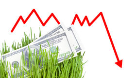 Growing Money in grass. 100 dollar bills growing in the green grass, Arrow falling down Stock Photography