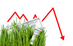 Growing Money in grass. 100 dollar bills growing in the green grass, Arrow falling down Royalty Free Stock Photos