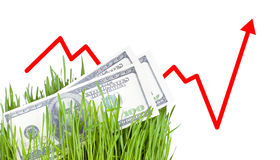 Growing Money in grass. 100 dollar bills growing in the green grass. Arrow rising up Stock Illustration