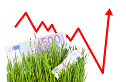 Growing Money in grass stock photos