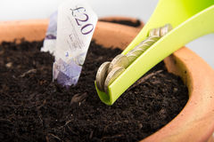 Growing money in pot. Growing coins and notes in pot stock image
