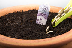 Growing money in pot. Growing coins and notes in pot Royalty Free Stock Photography