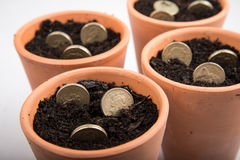 Growing money in pot. Growing coins and notes in pot royalty free stock images