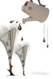Growing Money. Stock Photo