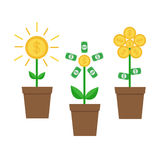 Growing money tree shining coin with dollar sign set. Plant in the pot. Financial growth concept. Successful business icon. Flat d Stock Images