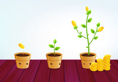 Free Growing Money Tree. Successful Business Saving Growth Concept Royalty Free Stock Photography - 60666767
