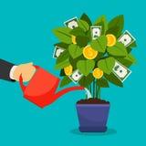 Growing money tree. Vector illustration. Businessman hand watering money tree Stock Images