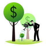 Growing money trees Stock Images