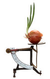 Growing onion on old letter scales Royalty Free Stock Photo