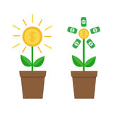 Growing paper money tree shining coin with dollar sign set. Plant in the pot. Financial growth concept. Successful business icon. Royalty Free Stock Images