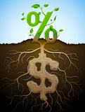 Growing percent sign as plant with leaves and dollar sign Stock Images