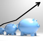 Growing Piggy Showing Increasing Investment Stock Photography