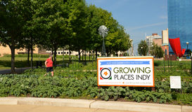 Growing Places Indy urban farm, downtown Indianapolis Royalty Free Stock Images
