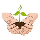 Growing plant in handful soil in hands. Comic style grow business concept web infographics. vector illustration. Growing plant in handful soil in hands. Comic Stock Photo