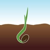 Growing Plant. Sprout grows. Vector concept of growing plant Stock Photos