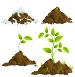 Growing plants Stock Photo