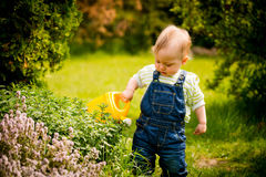 Growing plants - baby with watering can Stock Photo