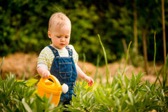 Growing plants - baby with watering can Stock Images
