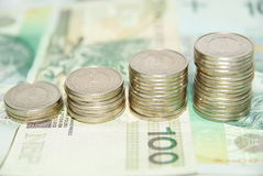 Growing polish zloty Stock Photography