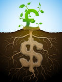 Growing pound sign like plant with leaves and dollar like root Stock Photography