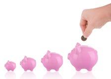 Growing savings - putting coin into piggy bank. Saving money concept - Growing savings. Hand putting coin into piggy bank Royalty Free Stock Images
