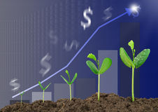Growing sprouts with bar graph and blurred dollar sign background. Business concept Stock Photography