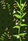 Growing Tree_eps. Illustration of growing tree with white flowers and green pattern background. --- This .eps file info Document: A4 Paper Size Document Color royalty free illustration