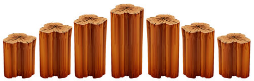 Growing tree stumps Royalty Free Stock Images