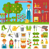 Growing Vegetables And Fruits In Garden Stock Photos
