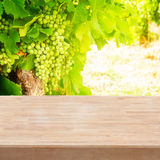 Growing white grape with wooden empty board Royalty Free Stock Photo
