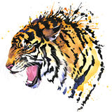 Growl tiger T-shirt graphics, tiger eyes illustration with splash watercolor textured background. Illustration watercolor tiger for fashion print, poster for vector illustration